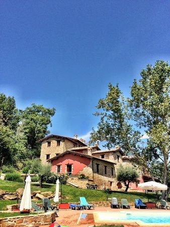 Borgo Belvederi : The pool
