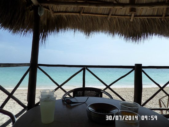 Melia Cayo Coco: View from the beach bar