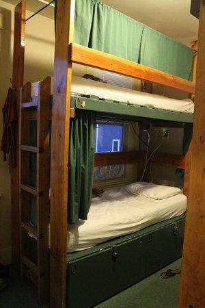 The Green Tortoise Hostel: bunks