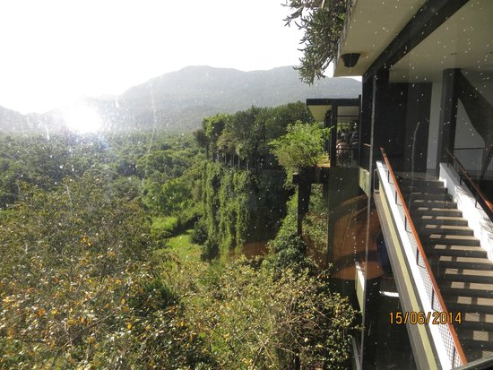 Heritance Kandalama: Hotel in a Forest!