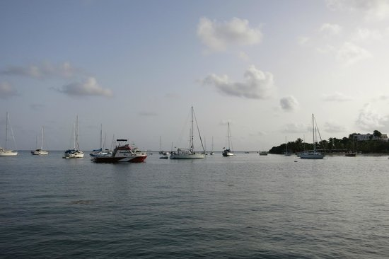 St. Croix Ultimate  Bluewater Adventures (SCUBA), Inc. : Early morning Christiansted