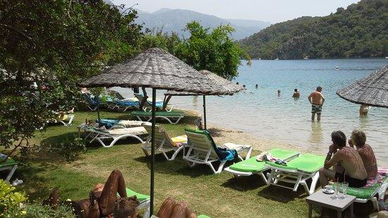 Majestic Hotel : sun city beach club