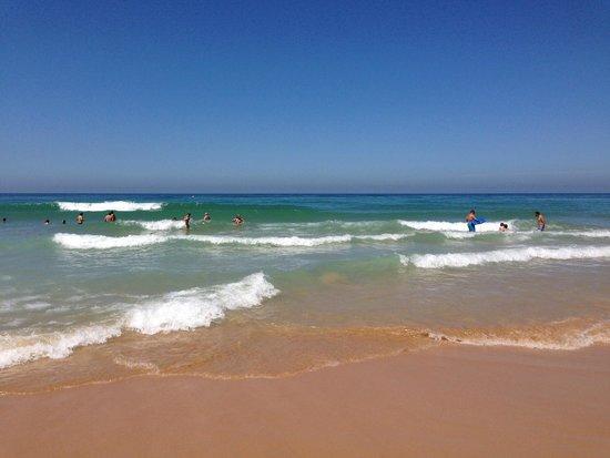 Melia Sancti Petri: Fantastic beach