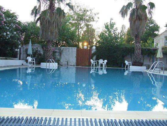 Hotel Pegasus: The pool