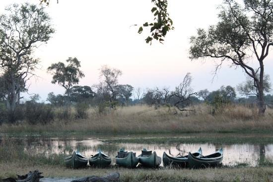 Great Plains Conservation Selinda Explorers Camp: Canoes ready for action