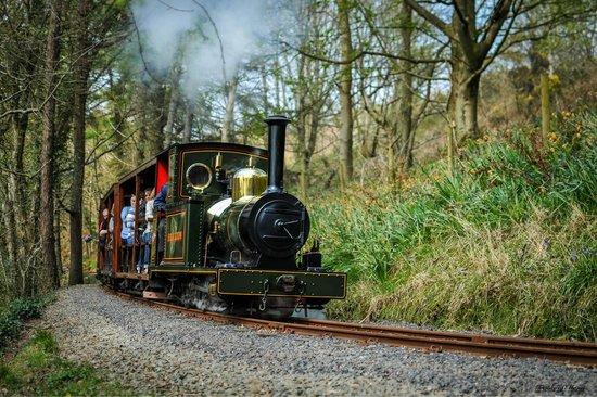 Groudle Glen Railway: Sea Lion steams through the glen