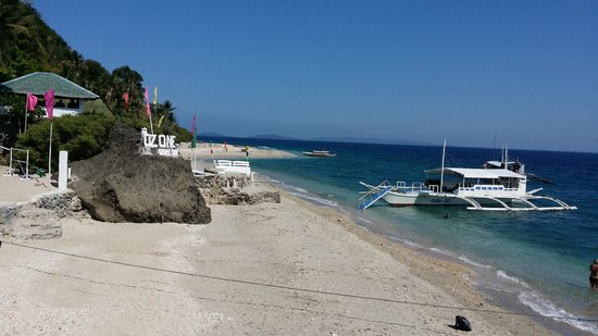 Blue Ribbon Dive Resort : Verde Island