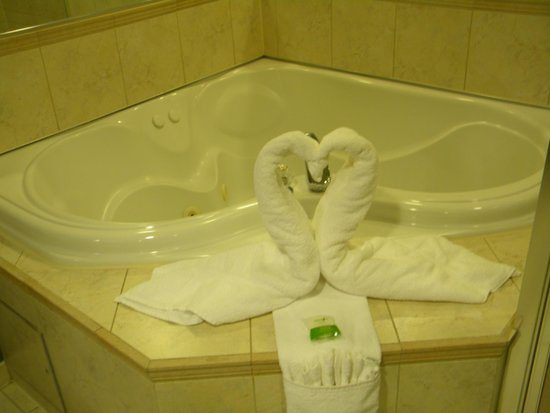 Oakes Hotel Overlooking the Falls: Swan towels in room
