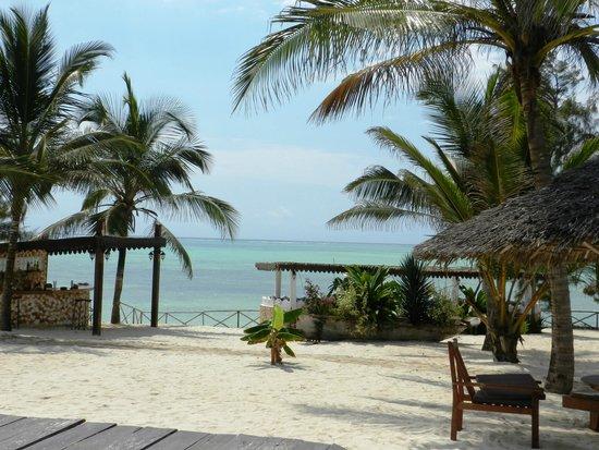 Seasons Lodge Zanzibar : View from the pool