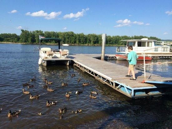Slippery's Tavern and Restaurant: Feeding ducks