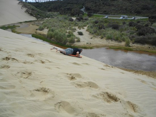 Te Paki Sand Dunes : Sand boarding at Te Paki Dunes