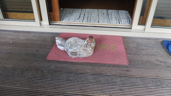 Muri Beach Hideaway: They even welcome you home