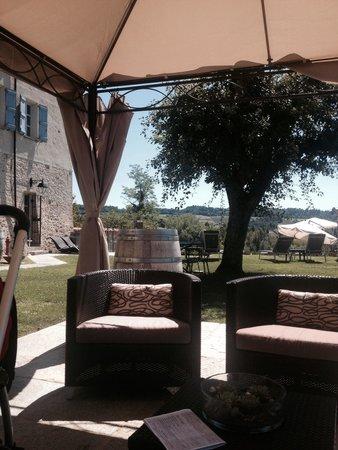 Antico Borgo Monchiero : Giardino bordo piscina