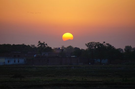 Lumbini Buddha Garden: Incredible Sunset!!