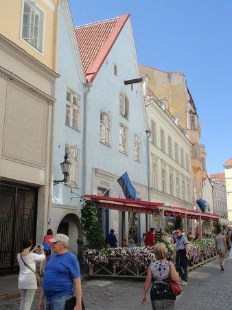 Tallinn Old Town: UNA SCORCIO