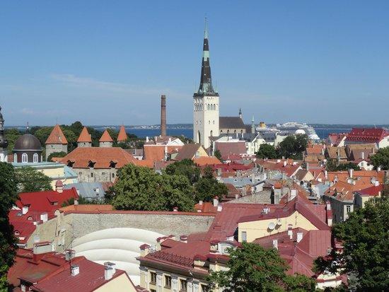 Tallinn Old Town: PANORAMA DA UN BELVEDERE