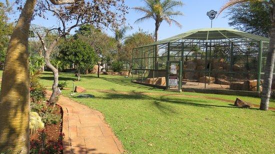 Mystic Monkeys And Feathers ZOO: Nice Gardens