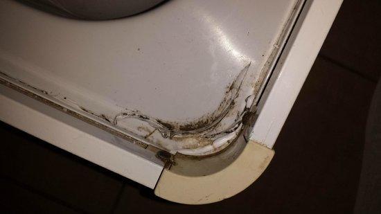 Truva Family Club: shower filthy
