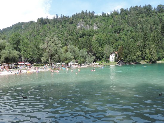 Bled Island : Bled - swimming area