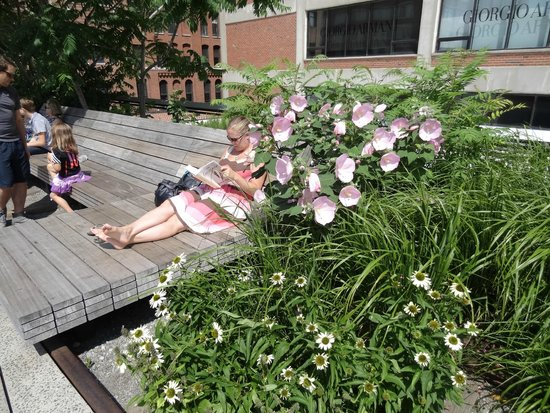 High Line: Plenty of lovely places to sit and read or relax.