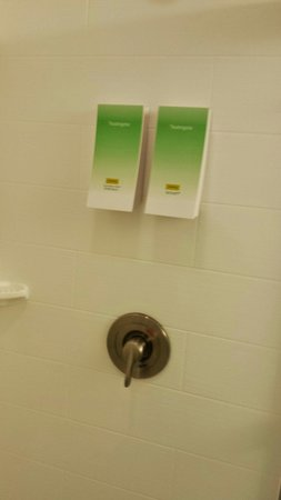 Home2 Suites by Hilton Rochester Henrietta: Shower with shampoo and soap dispensers