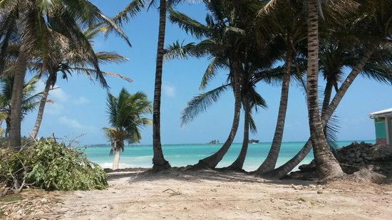 Decameron San Luis : Vista da praia próxima ao hotel