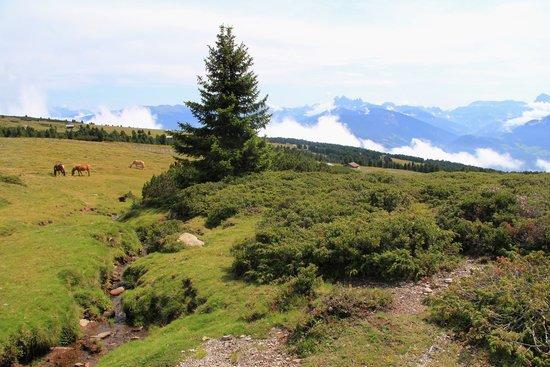 Altopiano del Renon: percorso Cieloronda