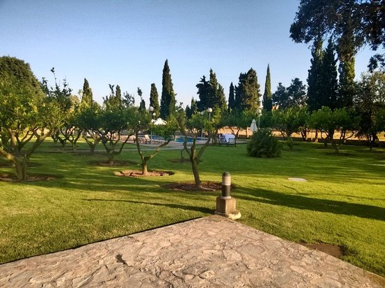 Finca Son Roig: Garden and pool