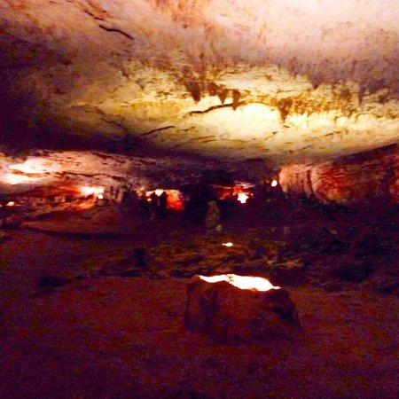 Grotte Prehistorique des Merveilles