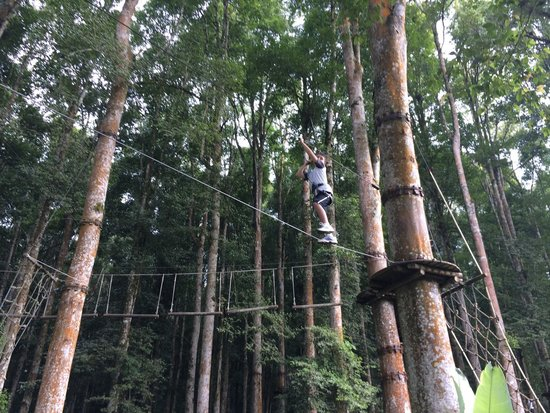 Bali Treetop Adventure Park: My son only 10