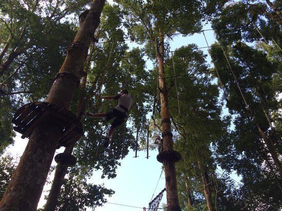 Bali Treetop Adventure Park: Very high up