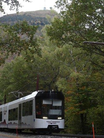 Panoramique des Dômes : Descente du train dans les arbres