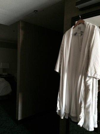 Motif Seattle: no where to hang damp robe
