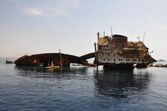 Tiran Island: затонувший корабль