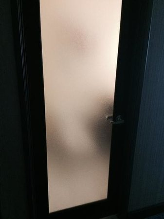 Motif Seattle: This is the bathroom door...obscure but not very private.