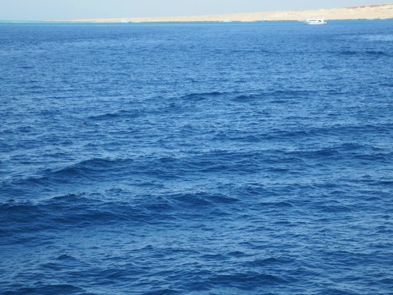 Tiran Island: Море