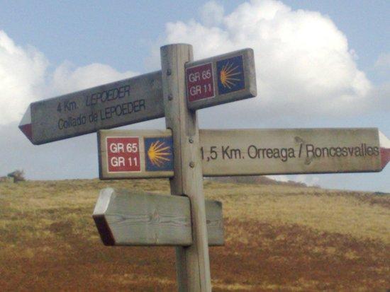 Colegiata de Roncesvalles: Camino signpost