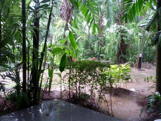 Nai Yang Beach Resort and Spa: Balcony area