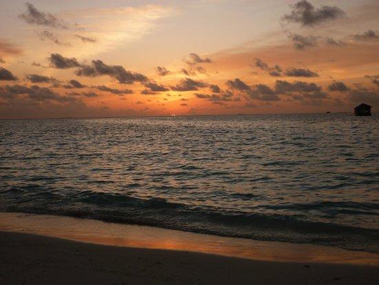 VOI Maayafushi Resort: tramonto