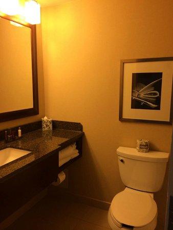 Detroit Marriott at the Renaissance Center : Hotel bathroom