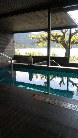 The Andaman, A Luxury Collection Resort: プールにおさる