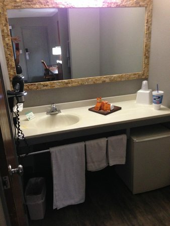 The Monroe Palm Springs: clean and well appointed bathroom