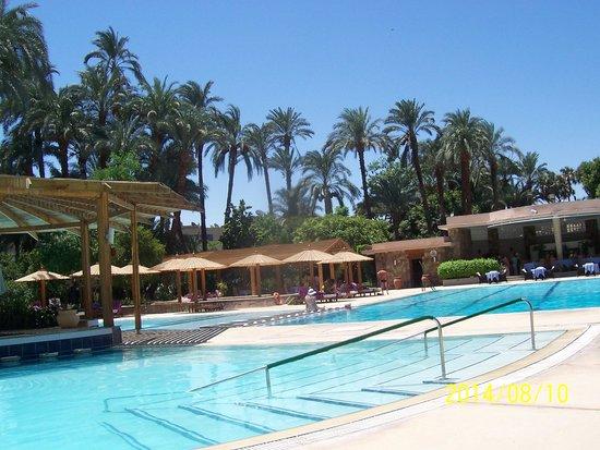 Sofitel Winter Palace Luxor: The pool