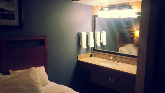 Embassy Suites by Hilton Austin - Central: Room