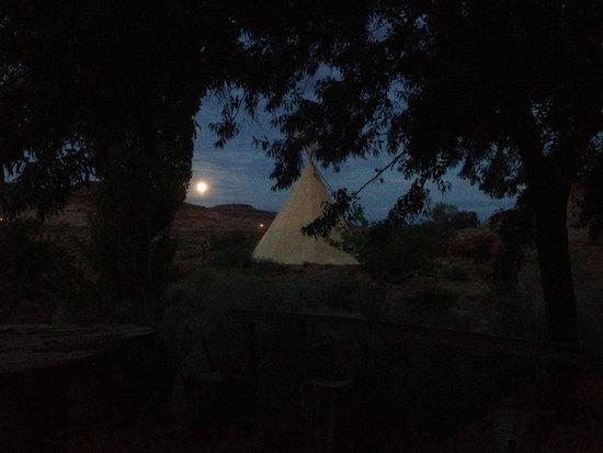 Firetree Bed & Breakfast : The super moon & tipi at Fire Tree Inn