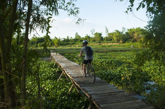Heaven and Earth Bicycle Tours : Bamboo bridge