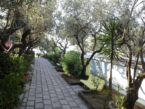 Villaggio Resort Nettuno: il viale dei bungalow