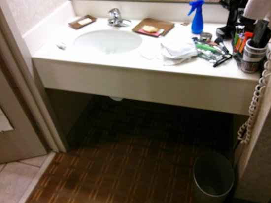 Ramkota Hotel : Toiletries and Trash Liners Not Replaced
