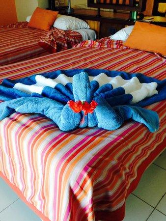 Hotel Playa Cayo Santa Maria : Rooms