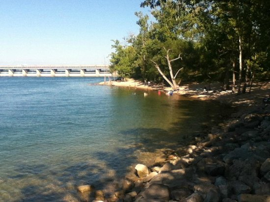 Table Rock Lake: Swimming beach near Dewey Short visitor's center